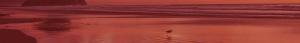 cabecera ave roja